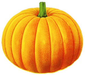 halloween-pumpkin-clip-art-24